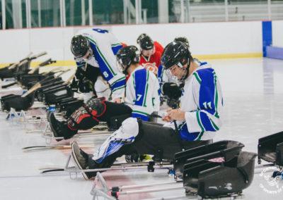 para ice sledge hockey sleds
